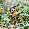 Cho rau mầm, cà rốt, thịt bò vào tô. Rưới đều nước mắm pha vào, trộn đều.