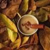 Trà sữa thực dưỡng là loại thức uống bổ dưỡng với sữa đậu nành thơm béo, ấm nóng, hòa quyện cùng vị trà hơi chát và những nguyên liệu tạo hương thơm cực kỳ. Có thể rắc chút bột quế khi dùng.