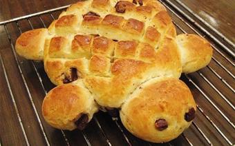 Bánh mì bé rùa đáng iu