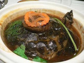Thịt rùa hầm củ cải đỏ