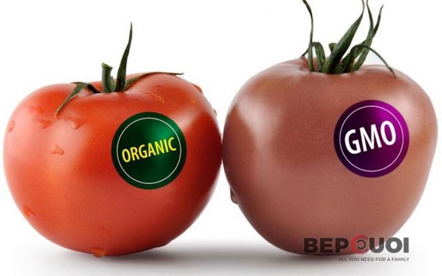 2 cách phân biệt cà chua thường và cà chua biến đổi gen
